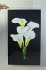 Crowborough Lillies - Sold